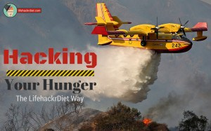 Hacking your Hunger the LifehackrDiet Way